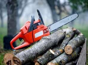 Хванаха 28-годишен да пренася незаконно дърва за огрев край село Обител