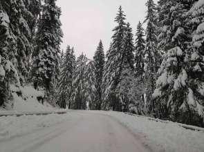 Очакваме сняг другата седмица