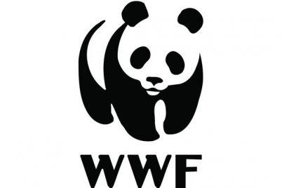 wwf-logo.jpg